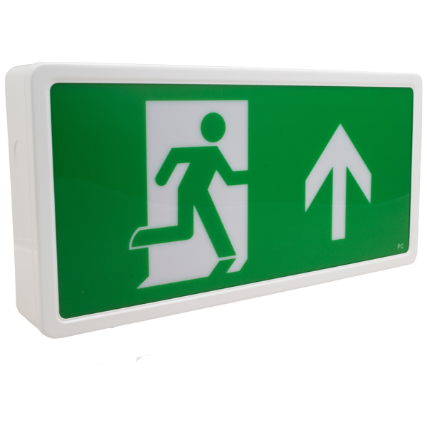 Low Energy Fire Exit Light Box Maintained