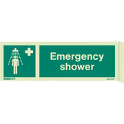 Wall Mount Emergency Shower 4367FS