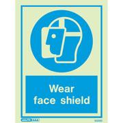 Wear Face Shield 5025