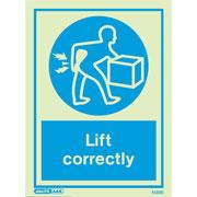 Lift Correctly 5130