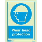 Wear Head Protection 5499
