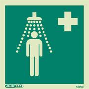 Emergency Shower 4389