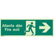 Allanfa Dan Right 480