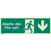 Allanfa Dan Down 481
