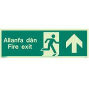 Allanfa Dan Up 484