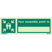 Assembly Point 4850