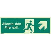 Allanfa Dan Up Right 485
