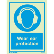 Wear Ear Protection 5095