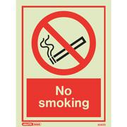 No Smoking 8067